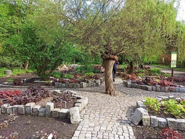 Miejski Ogród Botaniczny w Zabrzu to jedna z perełek województwa śląskiego