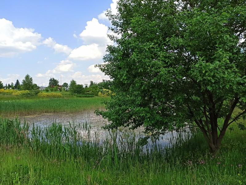 Śląski Ogród Botaniczny w Mikołowie - sielska kraina województwa śląskiego