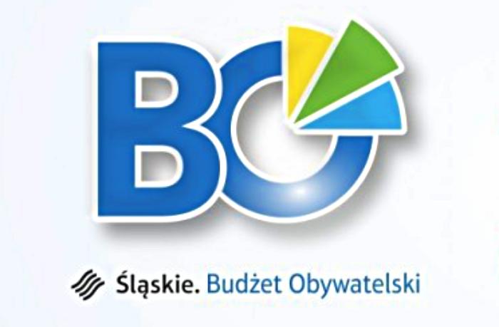 Marszałkowski Budżet Obywatelski rozstrzygnięty. Jakie projekty zostaną zrealizowane? - galeria