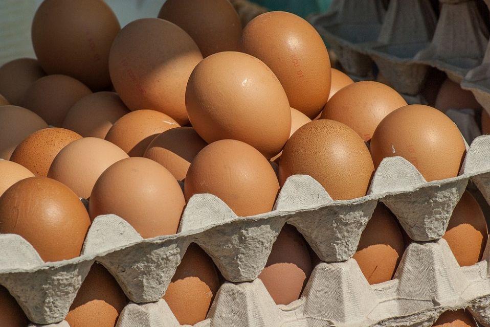 GIS alarmuje: Salmonella w jajkach Ferma Drobiu - galeria