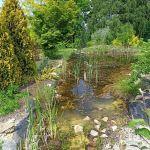 Śląski Ogród Botaniczny w Mikołowie - sielska kraina województwa śląskiego - galeria