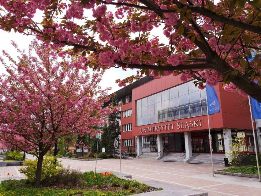 Studenci mają wolne. Śląskie uczelnie odwołały zajęcia z powodu koronawirusa - galeria